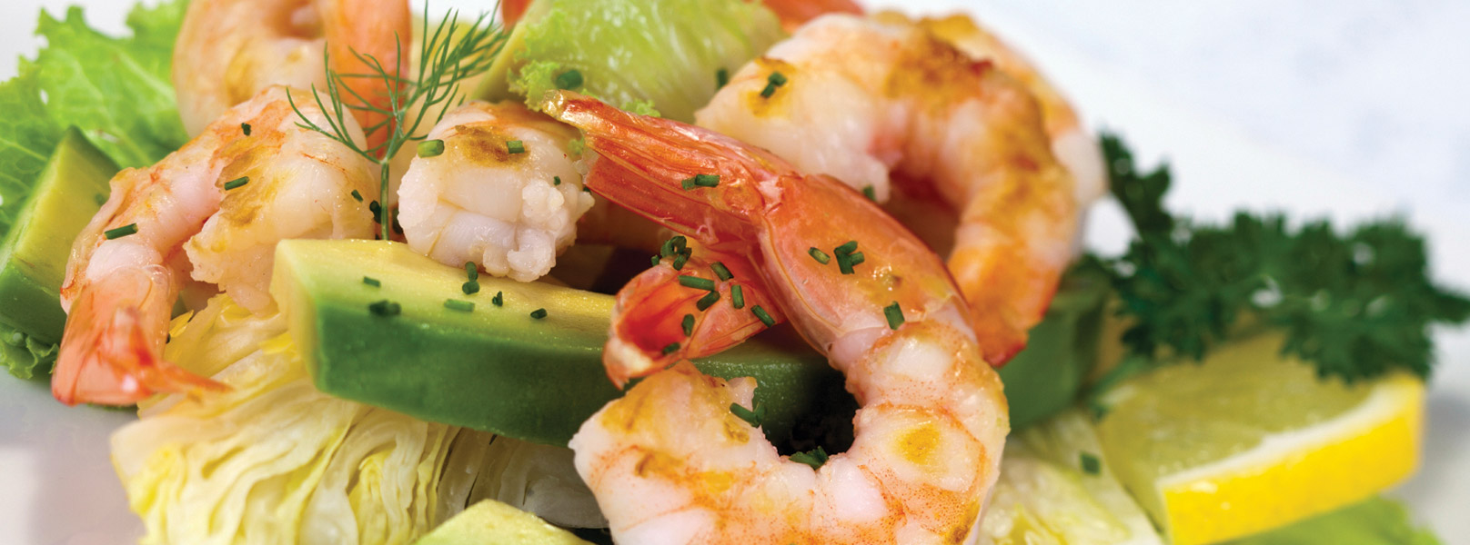 shrimp-header