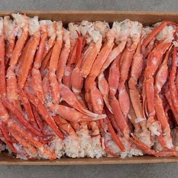 seatrek-deepwater-crab