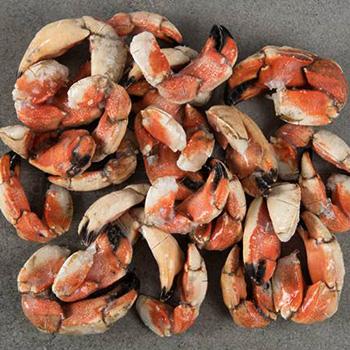 seatrek-jonah-crab