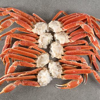 seatrek-snow-crab cluster